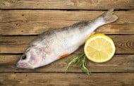Zdrowy jak ryba – mit czy prawda?