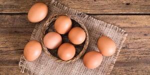 Ile jajek powinniśmy spożywać tygodniowe? Czy jajka są nieszkodliwe? Odpowiadamy w artykule!
