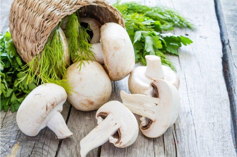 8 powodów dla których warto jeść grzyby